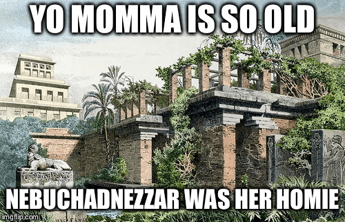 Damn she's old |  YO MOMMA IS SO OLD; NEBUCHADNEZZAR WAS HER HOMIE | image tagged in memes,history,historical meme,browser history,babylon | made w/ Imgflip meme maker