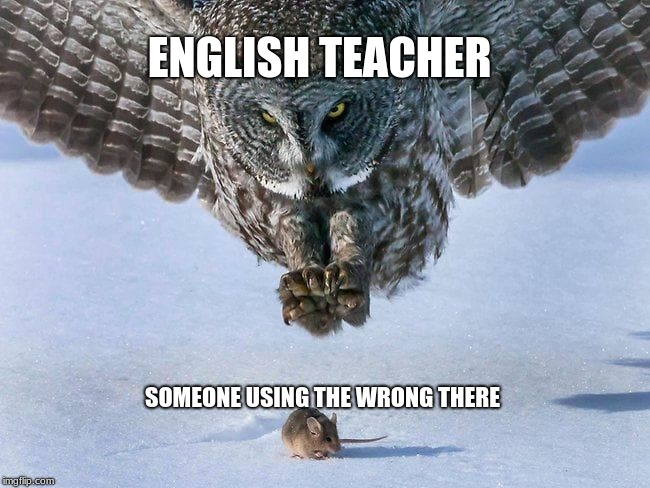 ENGLISH TEACHER SOMEONE USING THE WRONG THERE | image tagged in owl,school | made w/ Imgflip meme maker