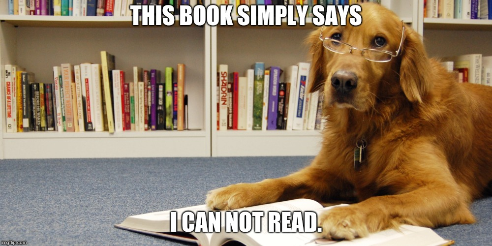 dog reading | THIS BOOK SIMPLY SAYS I CAN NOT READ. | image tagged in dog reading | made w/ Imgflip meme maker