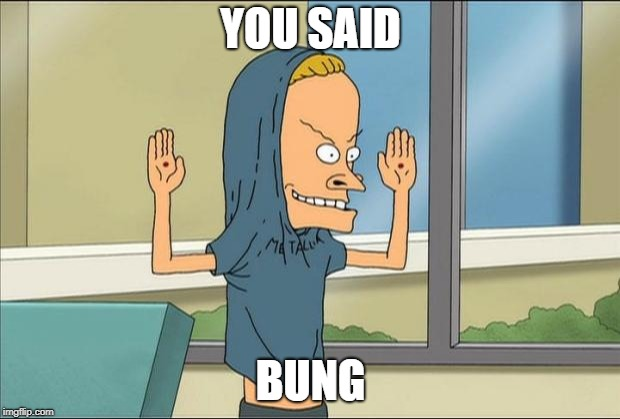 Beavis Cornholio | YOU SAID BUNG | image tagged in beavis cornholio | made w/ Imgflip meme maker
