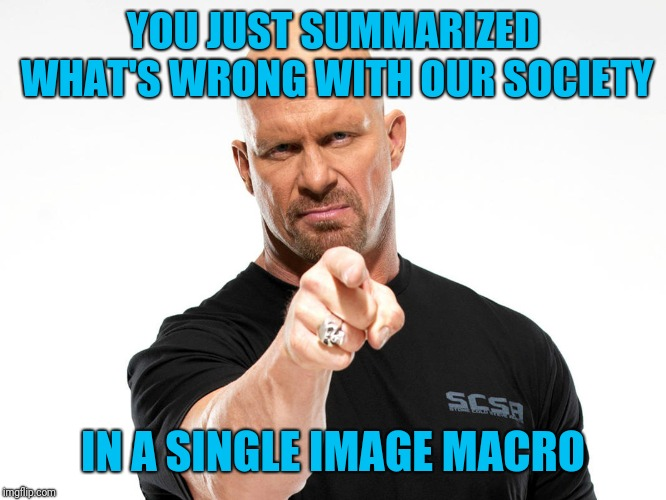 Steve Austin | YOU JUST SUMMARIZED WHAT'S WRONG WITH OUR SOCIETY IN A SINGLE IMAGE MACRO | image tagged in steve austin | made w/ Imgflip meme maker