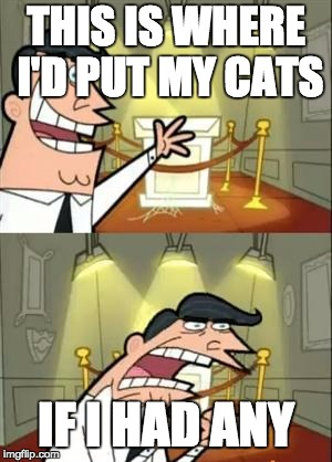 This Is Where I'd Put My Trophy If I Had One | THIS IS WHERE I'D PUT MY CATS IF I HAD ANY | image tagged in memes,this is where i'd put my trophy if i had one | made w/ Imgflip meme maker