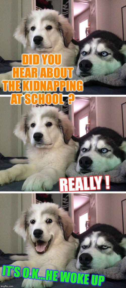 Dog bad joke | DID YOU HEAR ABOUT THE KIDNAPPING AT SCHOOL  ? IT'S O.K...HE WOKE UP REALLY ! | image tagged in dog bad joke,kidnapping,miss heard,punny | made w/ Imgflip meme maker