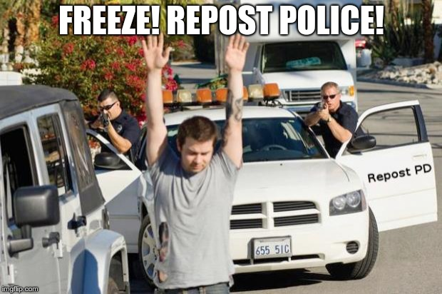 Repost Police | FREEZE! REPOST POLICE! | image tagged in repost police | made w/ Imgflip meme maker