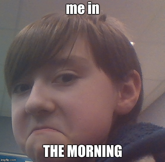 my friend's face | me in THE MORNING | image tagged in inthemorning | made w/ Imgflip meme maker