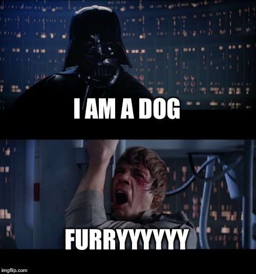Star Wars No Meme | I AM A DOG FURRYYYYYY | image tagged in memes,star wars no | made w/ Imgflip meme maker