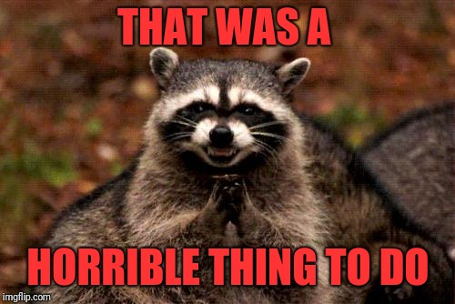 Evil Plotting Raccoon Meme | THAT WAS A HORRIBLE THING TO DO | image tagged in memes,evil plotting raccoon | made w/ Imgflip meme maker