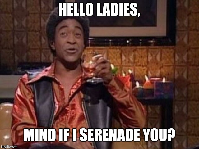 SNL Ladies Man | HELLO LADIES, MIND IF I SERENADE YOU? | image tagged in snl ladies man | made w/ Imgflip meme maker