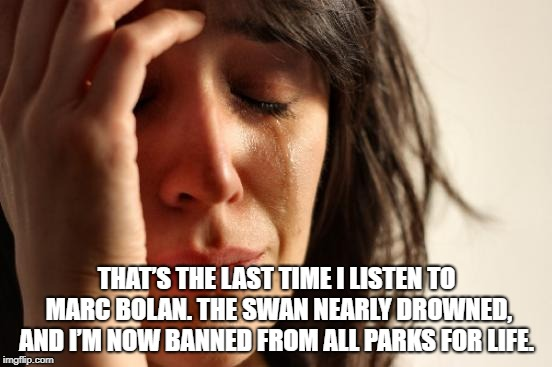 First World Problems Meme |  THAT'S THE LAST TIME I LISTEN TO MARC BOLAN. THE SWAN NEARLY DROWNED, AND I'M NOW BANNED FROM ALL PARKS FOR LIFE. | image tagged in memes,first world problems | made w/ Imgflip meme maker