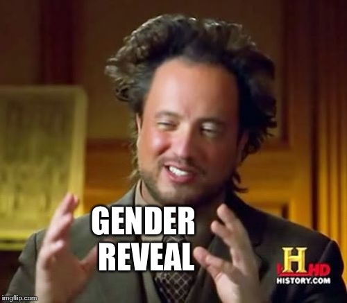Ancient Aliens Meme | GENDER REVEAL | image tagged in memes,ancient aliens | made w/ Imgflip meme maker