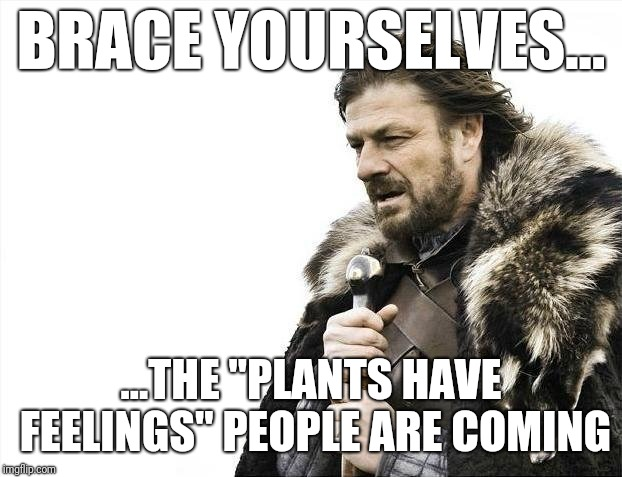 "Carnists, am I right? | BRACE YOURSELVES... ...THE ""PLANTS HAVE FEELINGS"" PEOPLE ARE COMING 
