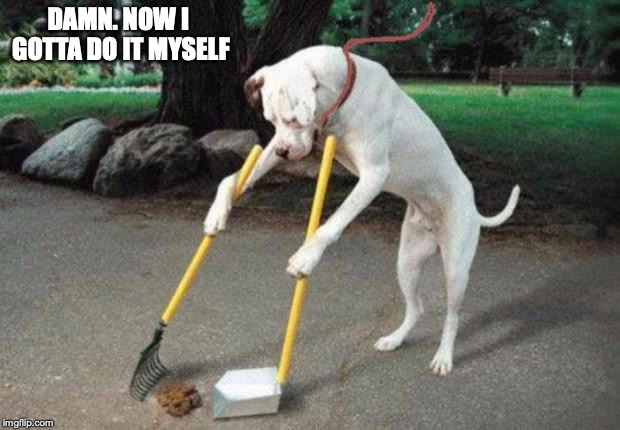 Dog poop | DAMN. NOW I GOTTA DO IT MYSELF | image tagged in dog poop | made w/ Imgflip meme maker
