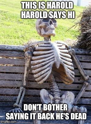Waiting Skeleton | THIS IS HAROLD HAROLD SAYS HI DON'T BOTHER SAYING IT BACK HE'S DEAD | image tagged in memes,waiting skeleton | made w/ Imgflip meme maker