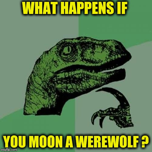 I already know the answers I'll get | WHAT HAPPENS IF YOU MOON A WEREWOLF ? | image tagged in memes,philosoraptor,full moon,still a better love story than twilight,the dark side | made w/ Imgflip meme maker