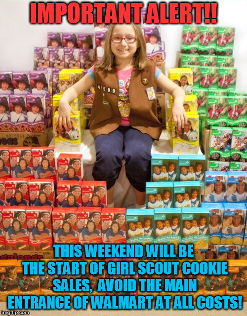 Girl Scout Cookies | IMPORTANT ALERT!! THIS WEEKEND WILL BE THE START OF GIRL SCOUT COOKIE SALES,  AVOID THE MAIN ENTRANCE OF WALMART AT ALL COSTS! | image tagged in girl scout cookies | made w/ Imgflip meme maker