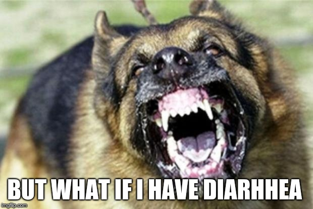 Evil German Shepherd from Hell 2 | BUT WHAT IF I HAVE DIARHHEA | image tagged in evil german shepherd from hell 2 | made w/ Imgflip meme maker