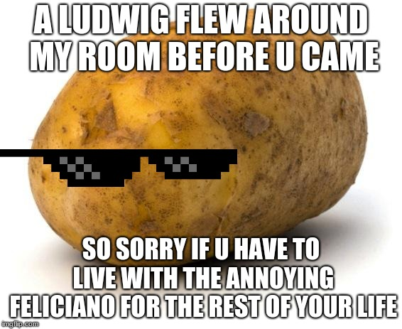 so, friend, about Germany | A LUDWIG FLEW AROUND MY ROOM BEFORE U CAME SO SORRY IF U HAVE TO LIVE WITH THE ANNOYING FELICIANO FOR THE REST OF YOUR LIFE | image tagged in i am a potato | made w/ Imgflip meme maker