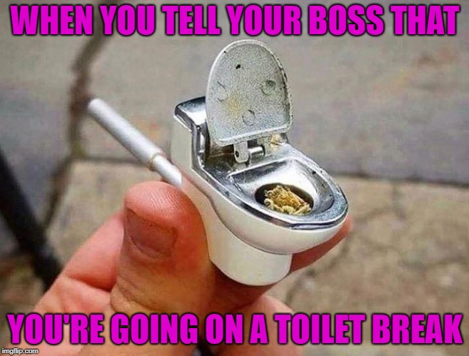 Dammit...now I want one. | WHEN YOU TELL YOUR BOSS THAT YOU'RE GOING ON A TOILET BREAK | image tagged in toilet break,memes,toilet pipe,funny,pipes,mary jane | made w/ Imgflip meme maker