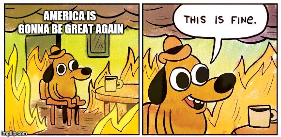This is fine dog | AMERICA IS GONNA BE GREAT AGAIN | image tagged in this is fine dog | made w/ Imgflip meme maker