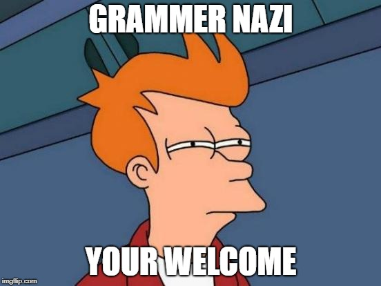 Futurama Fry Meme | GRAMMER NAZI YOUR WELCOME | image tagged in memes,futurama fry | made w/ Imgflip meme maker