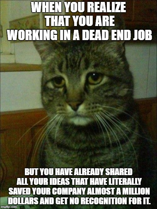 Depressed Cat | WHEN YOU REALIZE THAT YOU ARE WORKING IN A DEAD END JOB BUT YOU HAVE ALREADY SHARED ALL YOUR IDEAS THAT HAVE LITERALLY SAVED YOUR COMPANY AL | image tagged in memes,depressed cat | made w/ Imgflip meme maker