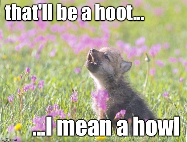 Baby Insanity Wolf Meme | that'll be a hoot... ...I mean a howl | image tagged in memes,baby insanity wolf | made w/ Imgflip meme maker