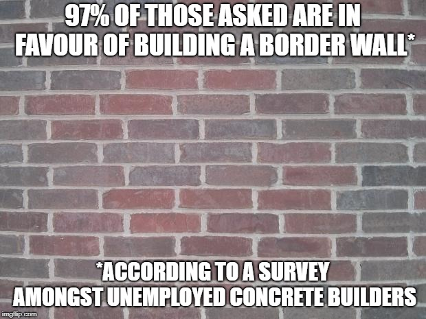 The Wall |  97% OF THOSE ASKED ARE IN FAVOUR OF BUILDING A BORDER WALL*; *ACCORDING TO A SURVEY AMONGST UNEMPLOYED CONCRETE BUILDERS | image tagged in the wall,border,survey | made w/ Imgflip meme maker