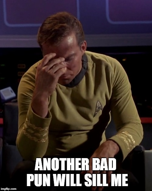 Kirk face palm | ANOTHER BAD PUN WILL SILL ME | image tagged in kirk face palm | made w/ Imgflip meme maker