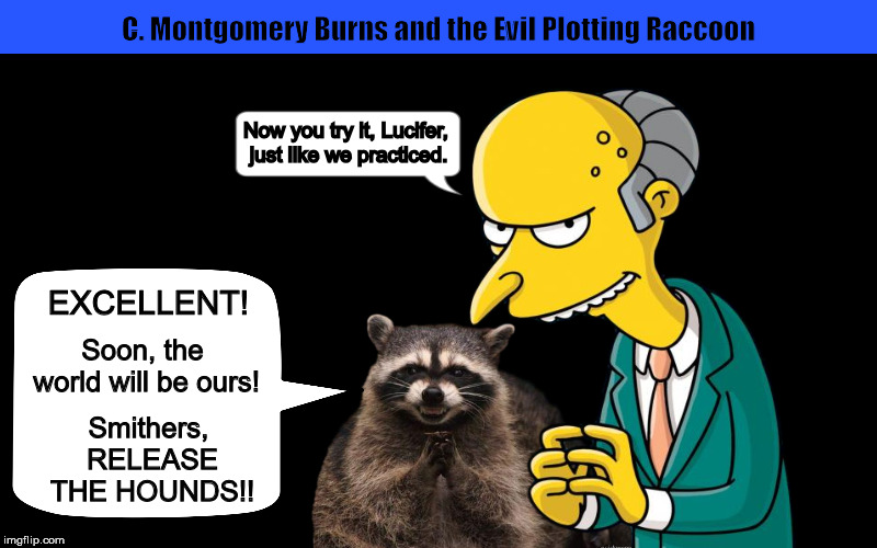 C. Montgomery Burns and the Evil Plotting Raccoon | image tagged in evil plotting raccoon,mr burns,the simpsons,excellent,funny,memes | made w/ Imgflip meme maker