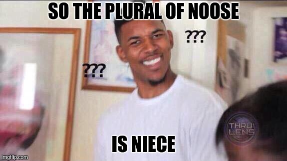 Black guy confused | SO THE PLURAL OF NOOSE IS NIECE | image tagged in black guy confused | made w/ Imgflip meme maker