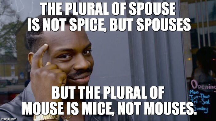 Roll Safe Think About It Meme | THE PLURAL OF SPOUSE IS NOT SPICE, BUT SPOUSES BUT THE PLURAL OF MOUSE IS MICE, NOT MOUSES. | image tagged in memes,roll safe think about it | made w/ Imgflip meme maker