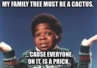 who cares | MY FAMILY TREE MUST BE A CACTUS, ...'CAUSE EVERYONE ON IT, IS A PRICK. | image tagged in who cares | made w/ Imgflip meme maker
