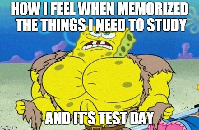 If I feel I studied the subject well, enough, I feel mentally buff. |  HOW I FEEL WHEN MEMORIZED THE THINGS I NEED TO STUDY; AND IT'S TEST DAY | image tagged in buff spongebob,school,spongebob,tests | made w/ Imgflip meme maker