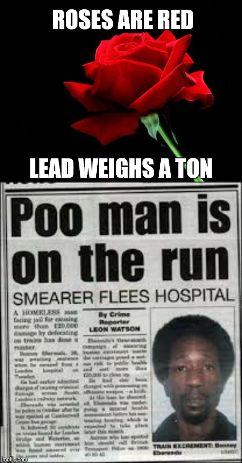 Roses are brown? | ROSES ARE RED LEAD WEIGHS A TON | image tagged in rose | made w/ Imgflip meme maker