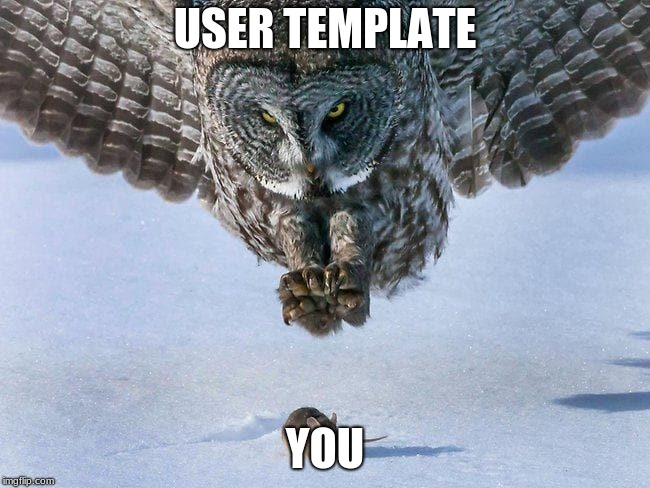 USER TEMPLATE YOU | image tagged in owl hunts mouse | made w/ Imgflip meme maker