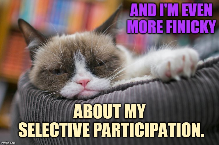 AND I'M EVEN MORE FINICKY ABOUT MY SELECTIVE PARTICIPATION. | made w/ Imgflip meme maker