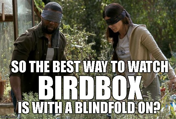I finally got around to watching it.. and I'd like my two hours back.. What did you guys think ? | SO THE BEST WAY TO WATCH IS WITH A BLINDFOLD ON? BIRDBOX | image tagged in birdbox,spoiler alert,anti-climactic,i'm still waiting for an ending to the movie | made w/ Imgflip meme maker