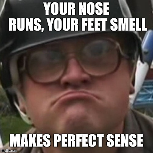 Smelly feet runny nose | YOUR NOSE RUNS, YOUR FEET SMELL MAKES PERFECT SENSE | image tagged in makes sense,nose,feet,run,smell | made w/ Imgflip meme maker