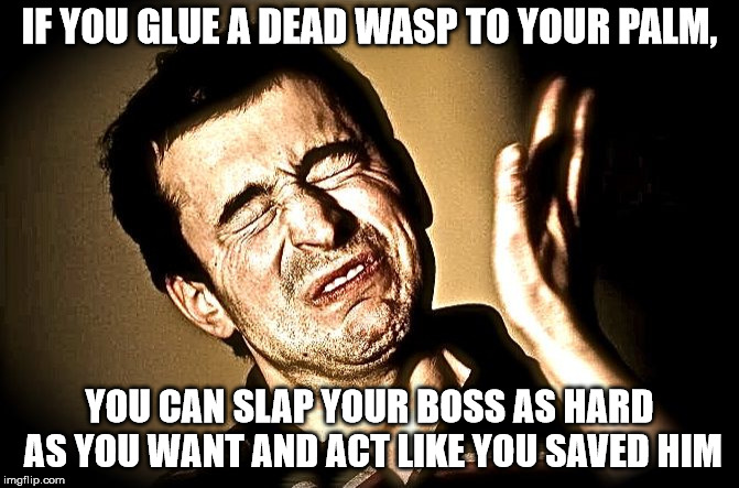 face slap | IF YOU GLUE A DEAD WASP TO YOUR PALM, YOU CAN SLAP YOUR BOSS AS HARD AS YOU WANT AND ACT LIKE YOU SAVED HIM | image tagged in face slap | made w/ Imgflip meme maker