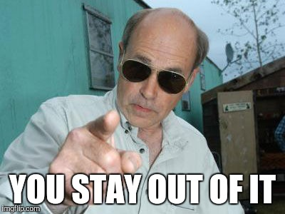 Trailer Park Boys - Jim Lahey | YOU STAY OUT OF IT | image tagged in trailer park boys - jim lahey | made w/ Imgflip meme maker