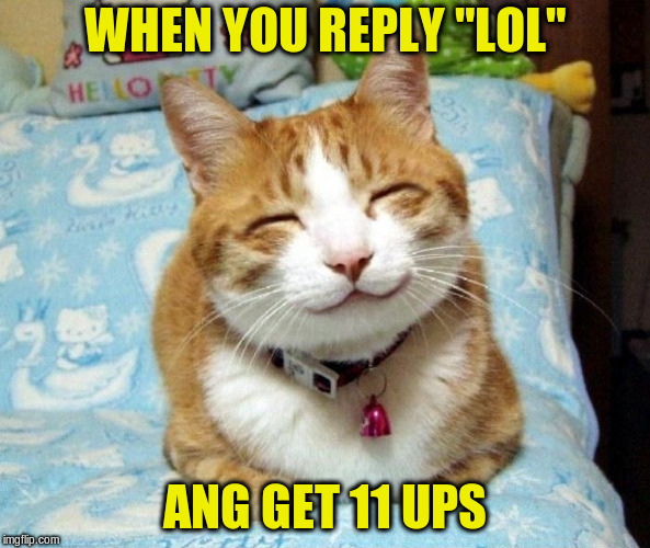 "Cute Smiling Cat | WHEN YOU REPLY ""LOL"" ANG GET 11 UPS 
