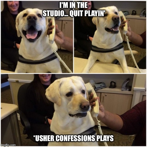 Usher's dog | I'M IN THE STUDIO... QUIT PLAYIN' *USHER CONFESSIONS PLAYS | image tagged in confessions,usher,dog,phone,uh oh | made w/ Imgflip meme maker