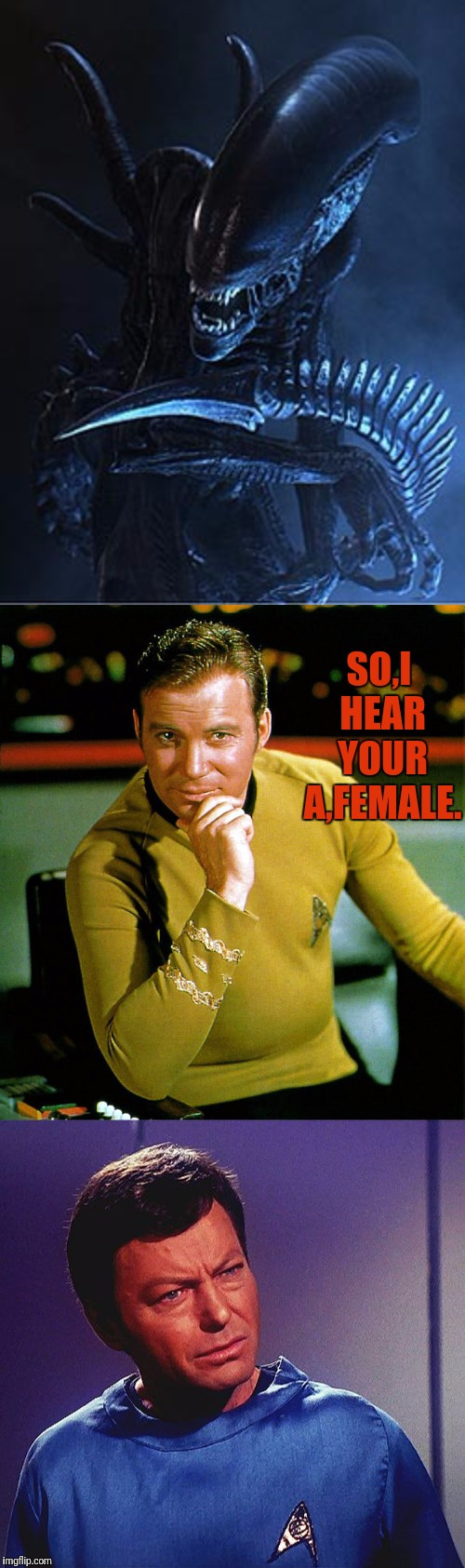 KIRK Uses A Dating Site |  SO,I HEAR YOUR A,FEMALE. | image tagged in star trek,captain kirk,kirk,bones,alien,bones mccoy | made w/ Imgflip meme maker