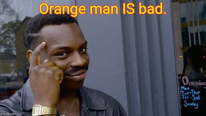 Roll Safe Think About It Meme | Orange man IS bad. | image tagged in memes,roll safe think about it | made w/ Imgflip meme maker