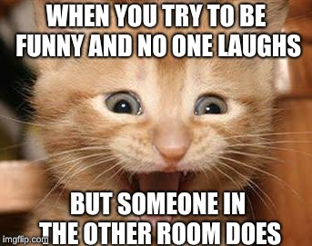 It's perfect timing | WHEN YOU TRY TO BE FUNNY AND NO ONE LAUGHS BUT SOMEONE IN THE OTHER ROOM DOES | image tagged in memes,excited cat,funny,cats | made w/ Imgflip meme maker