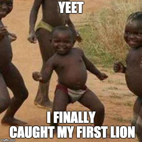 Third World Success Kid Meme |  YEET; I FINALLY CAUGHT MY FIRST LION | image tagged in memes,third world success kid | made w/ Imgflip meme maker