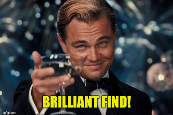 Leonardo Dicaprio Cheers Meme | BRILLIANT FIND! | image tagged in memes,leonardo dicaprio cheers | made w/ Imgflip meme maker