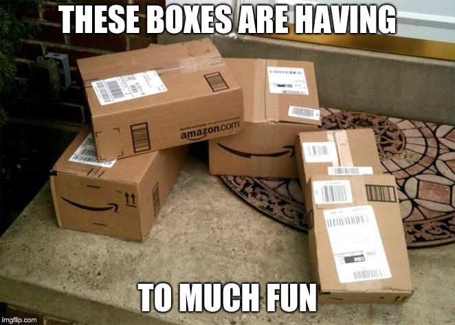 THESE BOXES ARE HAVING TO MUCH FUN | image tagged in amazon boxes on porch | made w/ Imgflip meme maker