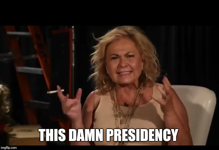 Rosanne | THIS DAMN PRESIDENCY | image tagged in rosanne | made w/ Imgflip meme maker