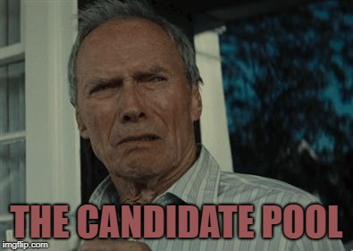 Disgusting face | THE CANDIDATE POOL | image tagged in disgusting face | made w/ Imgflip meme maker